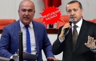 CHP'li Bakan'dan Cumhurbaşkanı Erdoğan'a...