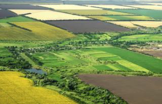 Hazine arazileri nasıl kiralanacak?