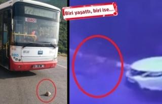 İzmir'de 2 ayrı 'hayat' manzarası