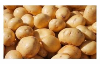 Türkiye, Suriye'den patates ithal edecek!