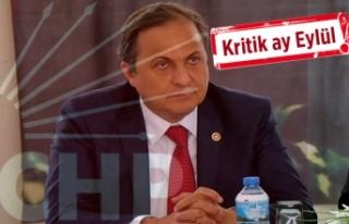 CHP'li Torun, yerel seçimin yol haritasını...