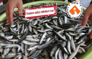Türkiye'nin çarpıcı 'balık' raporu
