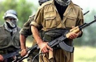 Bakanlık açıkladı: Biri üst düzey 18 terörist...