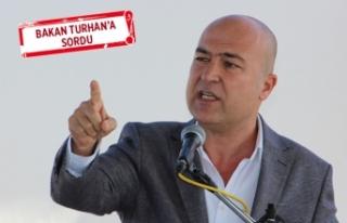 CHP'li Bakan: Çandarlı Limanı 'vaadi'...