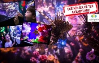 'Funtastic Aquarium İzmir' açıldı!