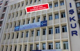 İzmir'de kaç kişi işe yerleşti?