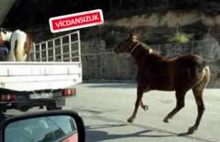 İzmir'de tepki çeken olay!
