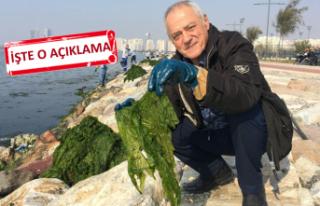 O profesör İzmir'deki zehirlenme uyarısına açıklık...