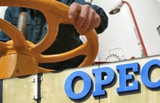 OPEC'den petrol üretimi ile ilgili çok önemli...