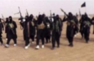 Suriye'deki DEAŞ hedefleri vuruldu: 44 terörist...