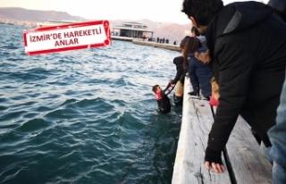 Denize düştü, polisler denize atlayarak kurtardı