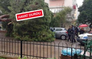 İzmir'de sağanak etkili oldu