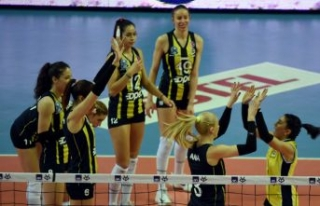 Fenerbahçe Opet - Türk Hava Yolları: 3-0