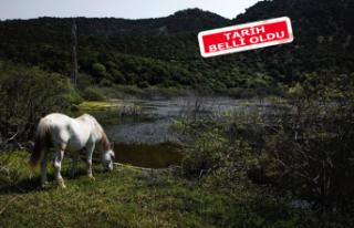 Bergama Çevre Filmleri Festivali düzenleyecek