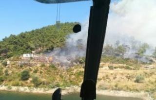 İzmir'in ciğerleri yine yandı!