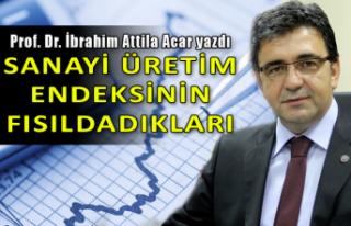 Prof. Dr. İbrahim Attila Acar yazdı: Sanayi üretim...
