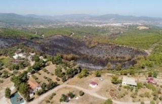 40 hektarlık zararın görüntüleri, yürek burktu