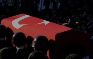 Acı haber şimdi geldi! Şırnak'ta şehit sayısı...