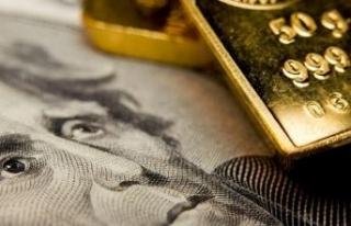 Dolar alan yandı altın kazandırdı
