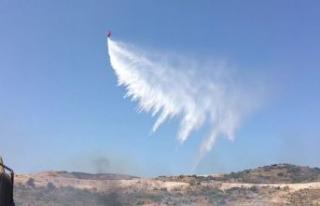 Foça'da 4 hektar makilik alan yandı