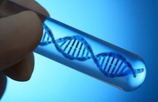 Kanserde kişiselleştirilmiş tedavi