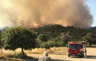 Urla'daki yangına 5 helikopterli takviye