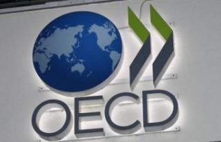 OECD Türkiye'nin büyüme tahminini tekrar değiştirdi!