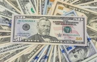 Dolar hesaplarından 292 milyon dolar çıktı