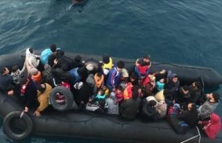 Edirne'de 263 göçmen yakalandı