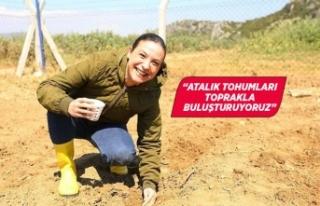 Efsane Efes Selçuk'a geri dönüyor