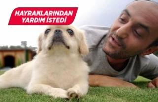 Survivor Ersin Korkut yeni köpeğinin fotoğrafını...