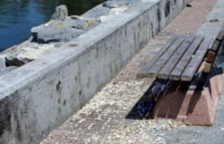 Belediyeden karar: Sahilde çiğdem-çekirdek yasağı!