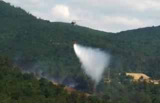 Çanakkale'de ormanlık alanda çıkan yangın...