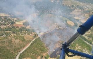 Denizli'de çıkan orman yangını kontrol altına...