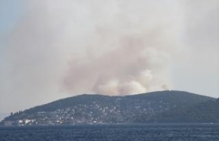 İstanbul Heybeliada'da orman yangını kontrol...