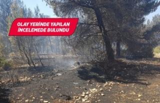 İzmir'deki orman yangınıyla ilgili bir kişi...