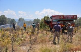 Uşak'ta çıkan yangında 70 dekar ekili alan...