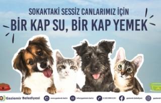 Can dostlara özel kampanya