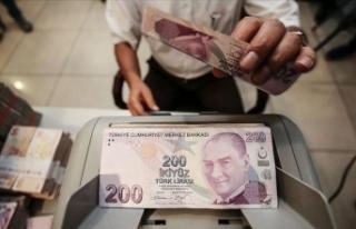 Financial Times: Türk Lirası sert düşüşle yeni...