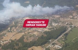 İzmir'in Menderes ilçesinde orman yangını...