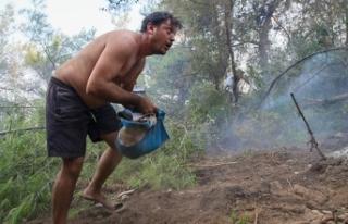 Orman yangınını söndürmek için kucak kucak toprak...