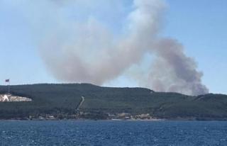 Çanakkale'de orman yangını kontrol altına...