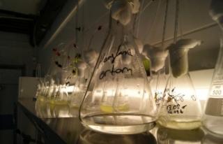 EÜ su ürünlerinden öncü bir proje daha