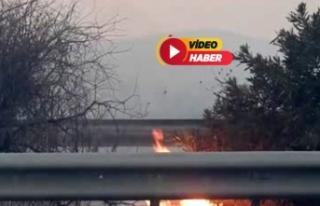 İzmir-Çeşme otoyolu kenarında yangın!