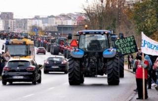 Vizon katliamının ardından çiftçiler sokakta