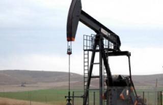 Petrol Dibe Vurdu