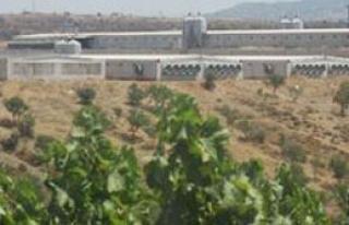 Manisa'ya yatırım yağıyor, İzmir…