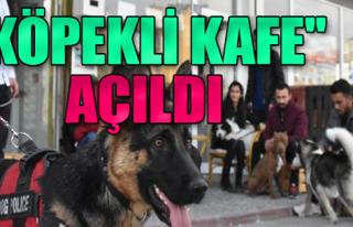 'Köpekli Kafe' Açıldı