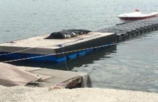3 Gündür Kayıp Olan Balıkçının Cesedi Sahile...