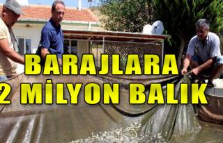 Barajlara 2 Milyon Balık Bırakıldı